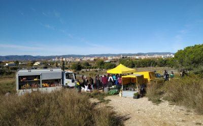 Divulgació i repoblació forestal a Vilafranca