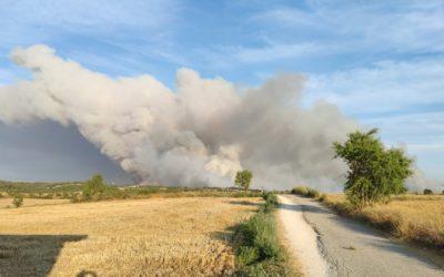 Incendi Forestal de Santa Coloma de Queralt